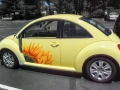 Naomi's Sunflower Car