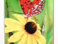 Gulf Butterfly on Cone Flower with Gold Guilding
